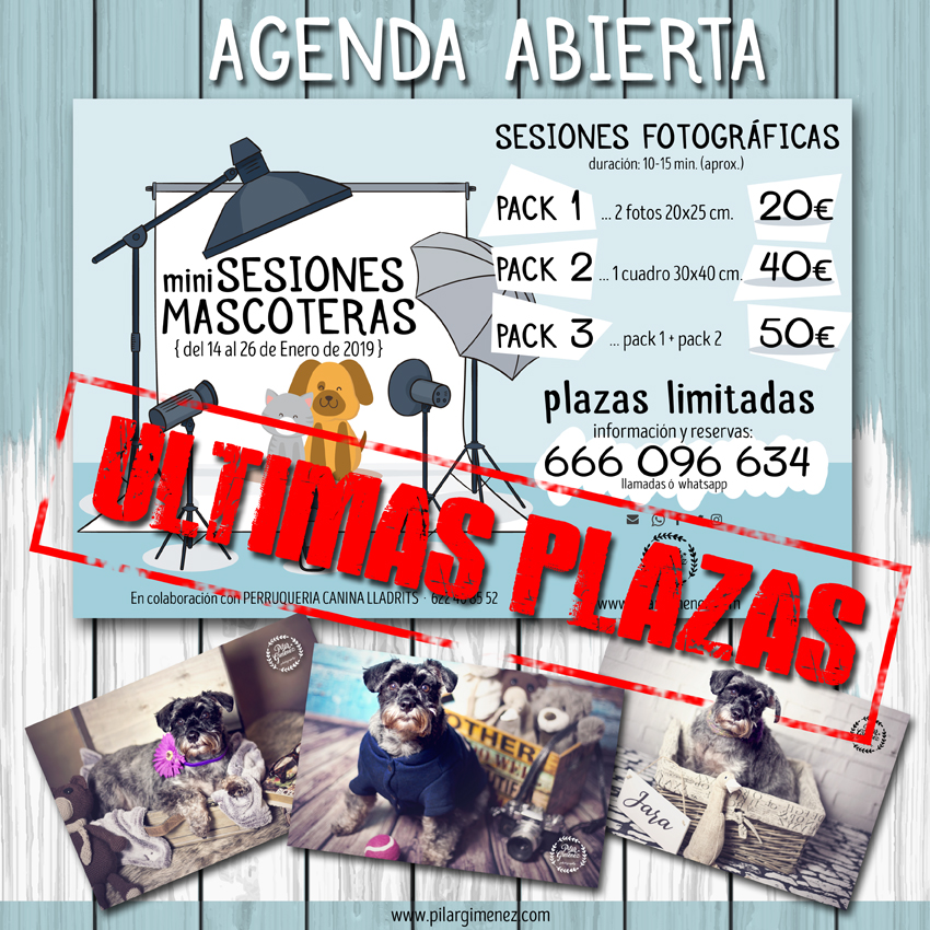 ÚLTIMAS PLAZAS